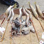 天然鮎の塩焼き体験教室